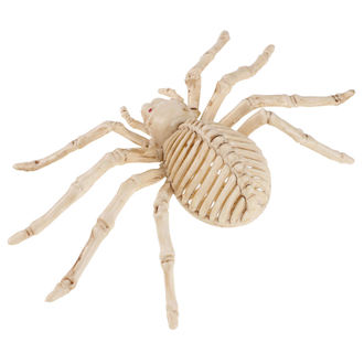 Decorațiune SPIDER SKELETON