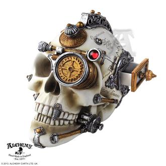 Decorațiune Alchemy Gothic - Erasmus Darwin's Steam-Cerebrum Skull, ALCHEMY GOTHIC