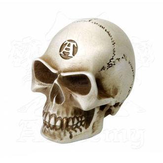 Decoraţiune (angrenaj cu pârghie cu mâner) ALCHEMY GOTHIC - Alchemist Gear Knob: Bone, ALCHEMY GOTHIC