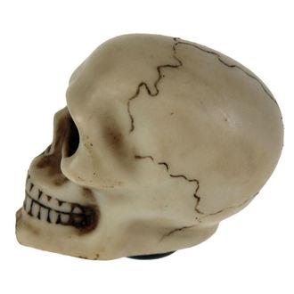 Decoraţiune (cap cu un angrenaj cu pârghie)  Skull Gear, NNM