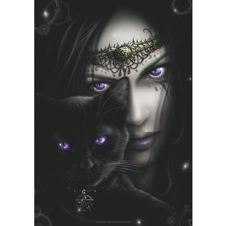 Steag Spiral - Cats Eyes, SPIRAL