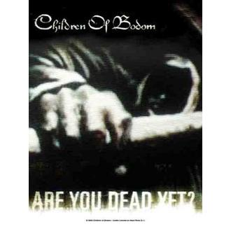 steag copii de Bodom - Sunt tu mort dar totusi?, HEART ROCK, Children of Bodom