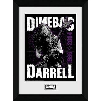 Poster (înrămat) Pantera - GB posters, GB posters, Pantera