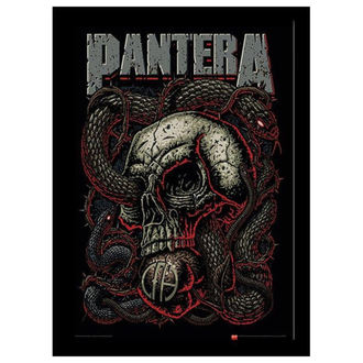 Poster înrămat  Pantera - Snake Eye - PYRAMID POSTERS, PYRAMID POSTERS, Pantera